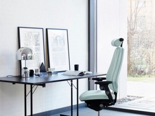 Elegant Office Chair for the Executive