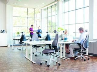 Ergonomic Office Chairs - RH Mereo neckrest