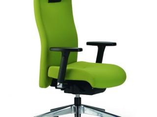 Ergonomic Project Chair